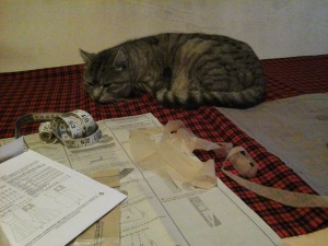 Starting work on the dress, with a helper